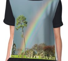 serious rainbow Chiffon Top