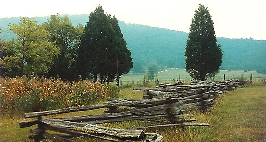 """""""Alabama Fence line""""... prints and products by © Bob Hall"""