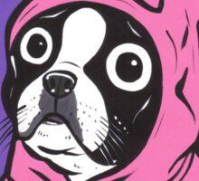 Boston Terrier in a Bunny suit Sticker