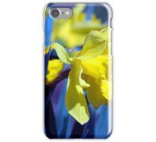 Spring Flower Series 17 iPhone Case/Skin