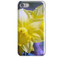 Spring Flower Series 18 iPhone Case/Skin