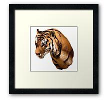 Tiger, Tiger Framed Print