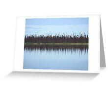 Burned Forest Lake (Anchorage, Alaska) Greeting Card
