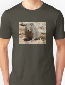 Squirrel Friends  T-Shirt