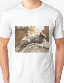 Squirrel Friends 2 T-Shirt