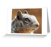 Macro Squirrel Eye Greeting Card