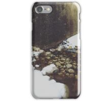Chilly Pool iPhone Case/Skin