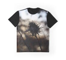 Milkweed Shadow at Sunset Graphic T-Shirt