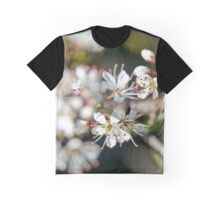 Signs of Spring Graphic T-Shirt