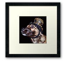 Mardi Gras Puppy 1 Framed Print