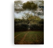 A Ladder to the Clouds Canvas Print