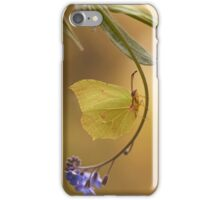 Yellow butterfly on blue forget-me-not flowers iPhone Case/Skin