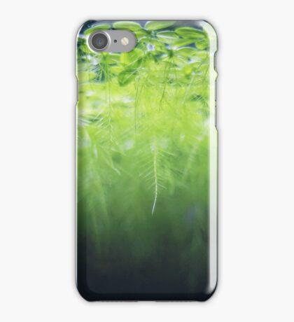 Dwarf water lettuce iPhone Case/Skin
