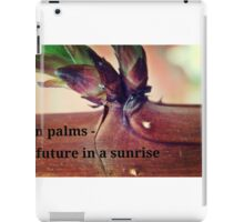 PHOTO HAIGA XCIV ~ raspberry iPad Case/Skin