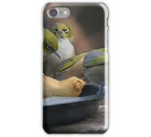 Silver Eye's.......Hey,  I was here first.......! iPhone Case/Skin