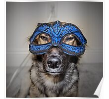 Masked Puppy Poster