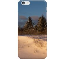 The Morning After the Snowstorm iPhone Case/Skin
