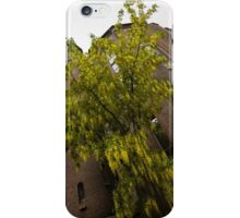 Beautiful Golden Chain Tree in Full Bloom iPhone Case/Skin