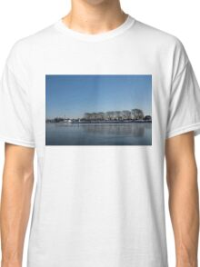 Seagull Convention on Thin Ice Classic T-Shirt