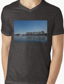 Seagull Convention on Thin Ice Mens V-Neck T-Shirt