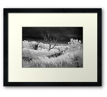 Barrabool River and stormclouds Framed Print