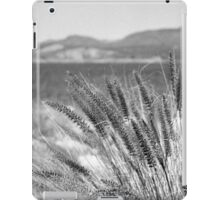 A Lake through the Grass iPad Case/Skin