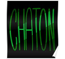 Chaton Poster