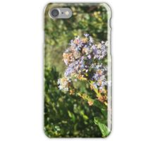 Blossoming Lavender-Colored Flowers iPhone Case/Skin