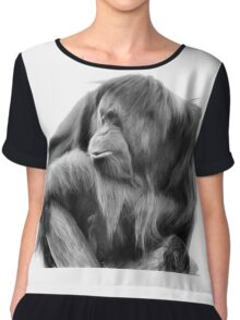 Orangutan in Black & White Chiffon Top