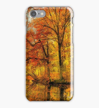 Fall colors of New England iPhone Case/Skin
