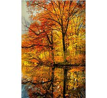 Fall colors of New England Photographic Print