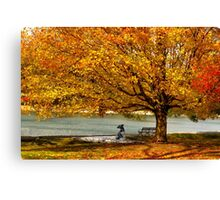 Golden maple warm me up  Canvas Print