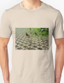 Pigeons on the pavement and grass in the park. T-Shirt