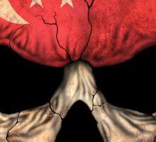 Singapore Flag Skull Sticker