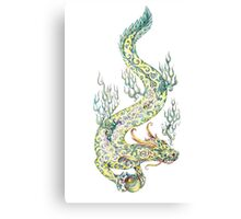 Water dragon retaining in the paws of a pearl (color) Canvas Print