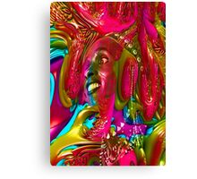 Music Festival Canvas Print