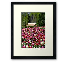 Bench Seat Framed Print