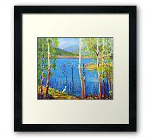 Hinze Dam with Egret Numinbah Valley Gold Coast Hinterland  Framed Print