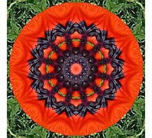 Red Poppies, Flower mandala, floral mandala-style Photographic Print