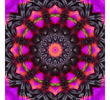 Surreal Blossoms, Flower Mandala Photographic Print