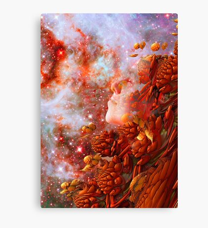Star Dream Canvas Print