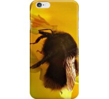 Bee On Daffodil iPhone Case/Skin