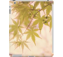 Green leaves of Japanese maple - vintage styleⅡ iPad Case/Skin