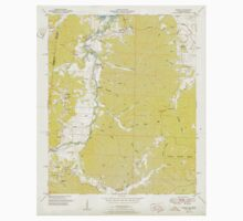 USGS TOPO Map Alabama AL Bishop 303258 1951 24000 Kids Tee