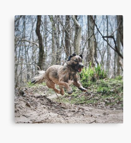 Jumping Puppy Canvas Print