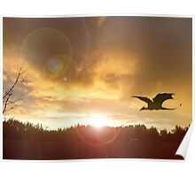 Dragon Sunset 1 Poster