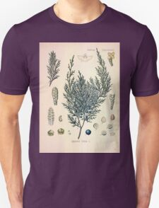 Köhler's Medizinal Pflanzen in naturgetreuen Abbildungen mit kurz erläuterndem Texte  Atlas zur Pharmacopoea 1883 1914 V2 013 Juniperus Sabin Juniper T-Shirt