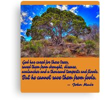 He Cannot Save Them From Fools Canvas Print