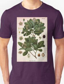 Köhler's Medizinal Pflanzen in naturgetreuen Abbildungen mit kurz erläuterndem Texte  Atlas zur Pharmacopoea 1883 1914 V3 059 Peumus Boldus T-Shirt