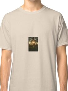 Tree in the sunlight Classic T-Shirt